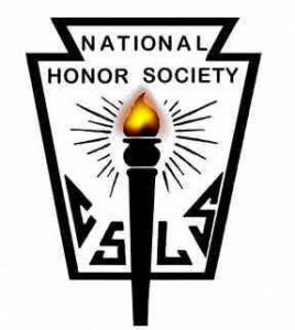 NHS (National Honor Society) application essay help!!!?