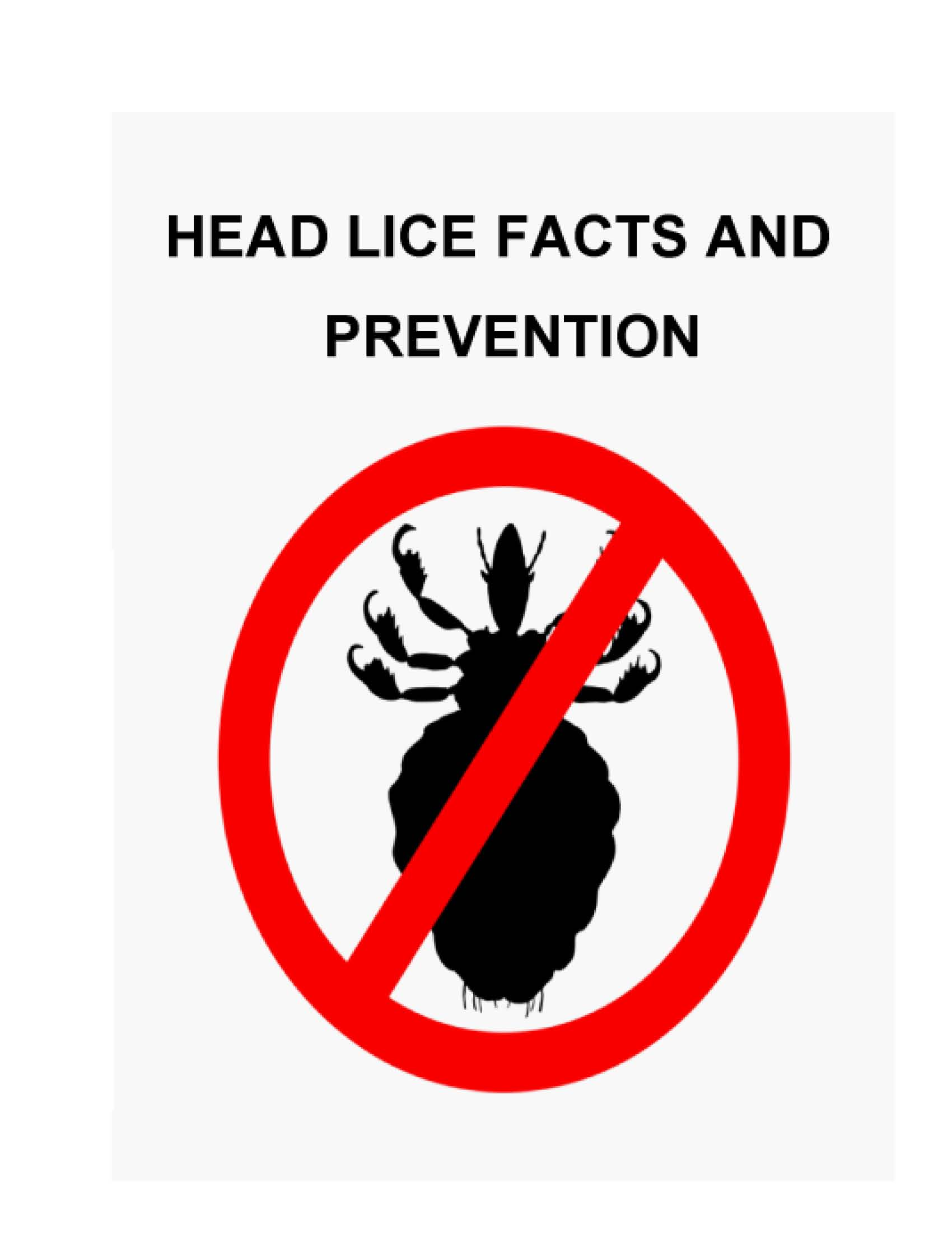 stop head lice icon
