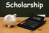 scholarship-pig_0