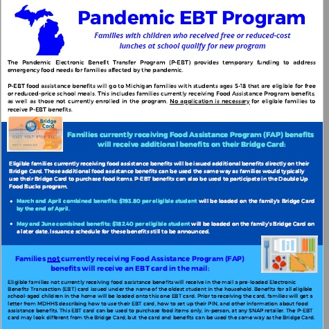 Pandemic EBT document image